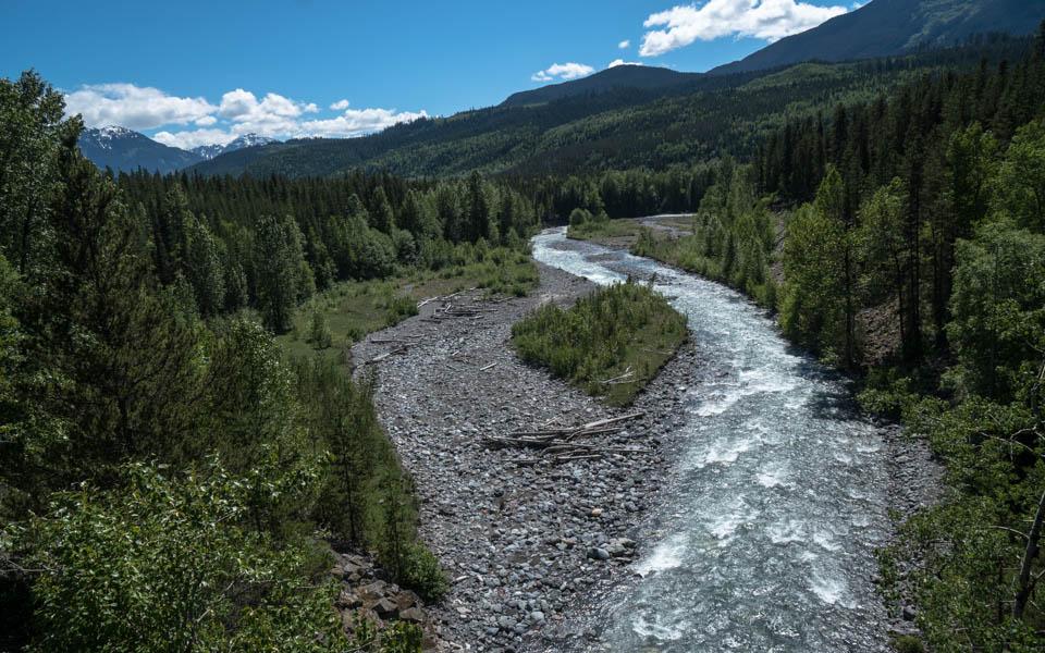 Vom kanadischen Regenwald in den Sommer